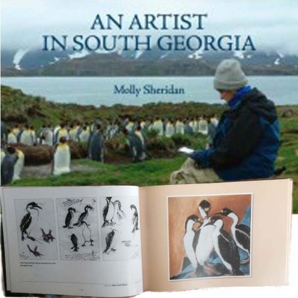 An Artist in South Georgia by Molly Sheridan
